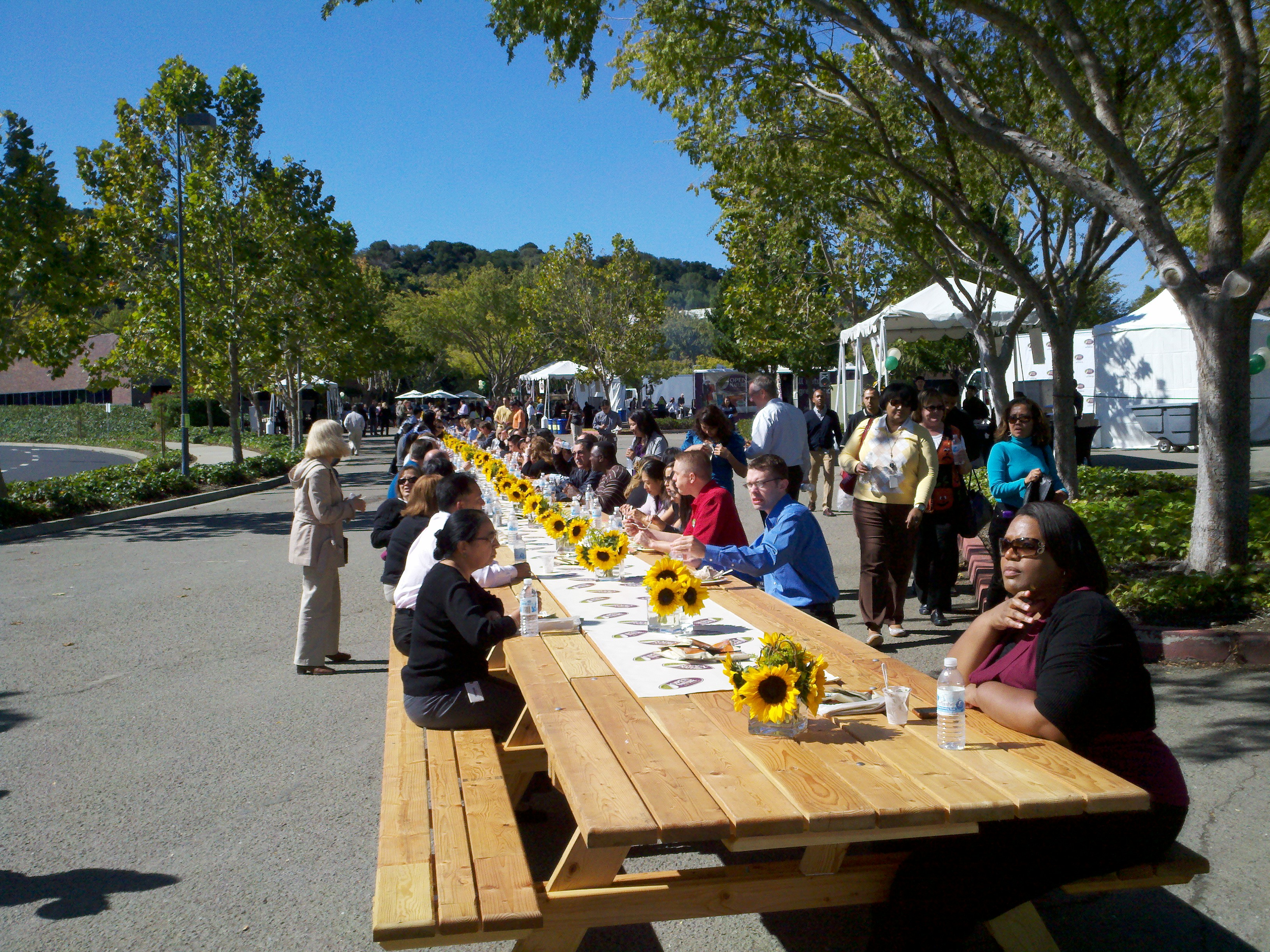 World 39 s longest picnic table for 10 person picnic table